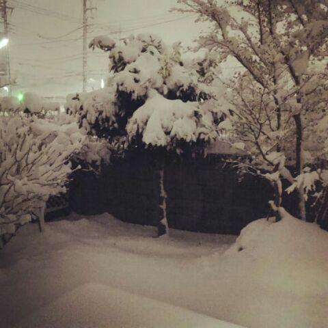 雪のため特別営業